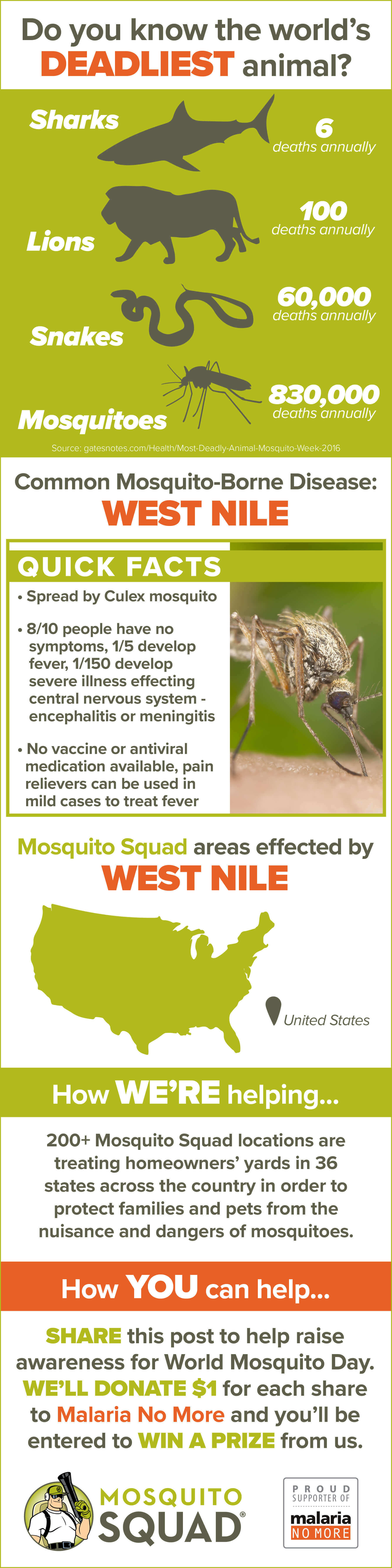 West Nile Infographic