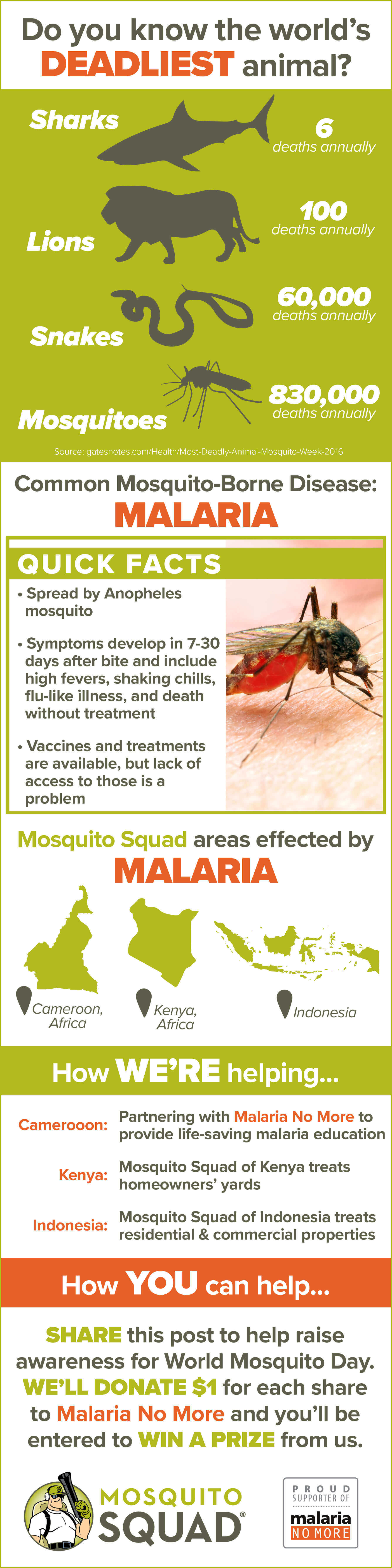 Malaria Symptoms, Treatment, & Prevention Infographic