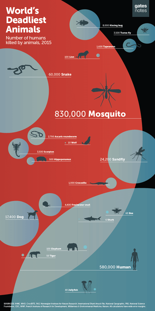infographic of the world's deadliest animals, with mosquitoes the most deadly by far