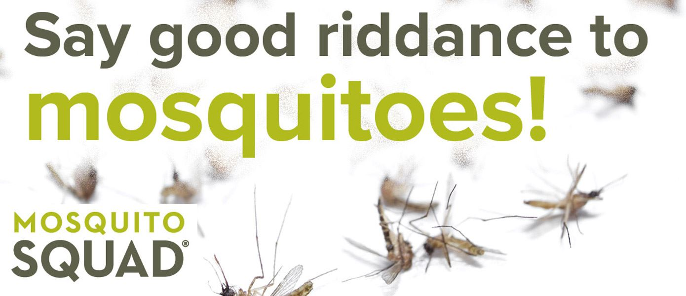 Say Good Riddance to Mosquitoes Flyer