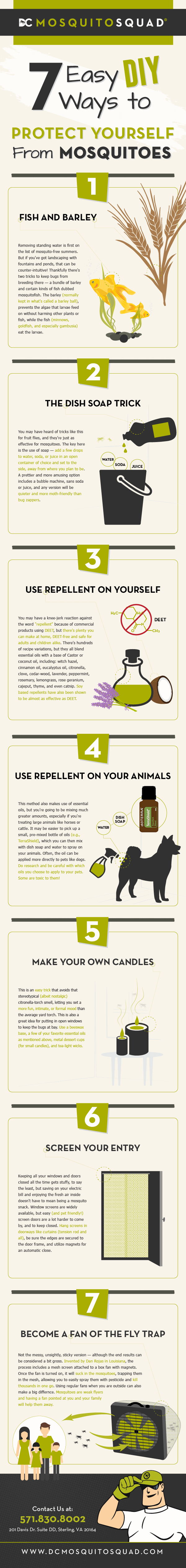 Infographic on 7 easy ways to protect yourself from mosquitoes