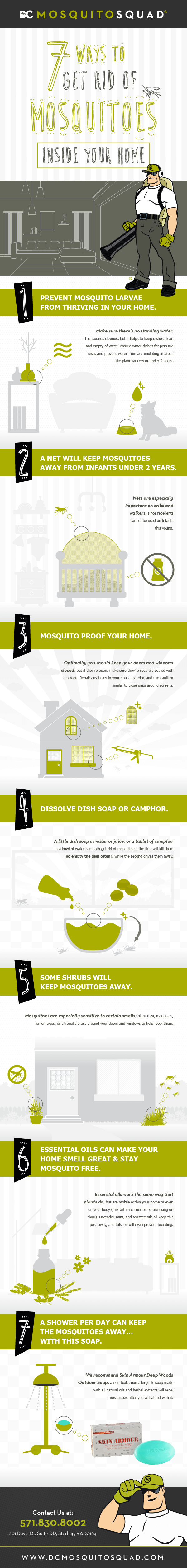 Infographic showing 7 Ways to Get Rid of Mosquitoes Inside Your Home