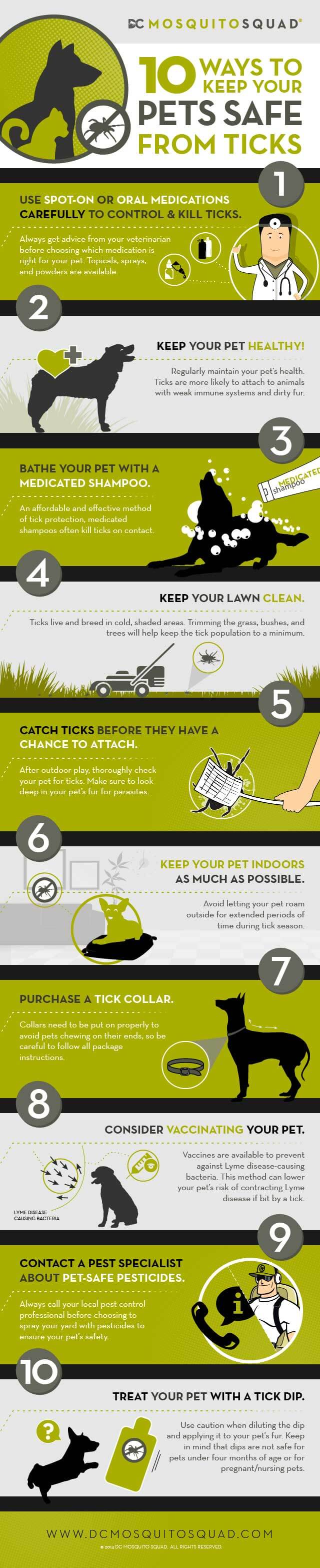 Infographic detailing how to protect pets from pests.