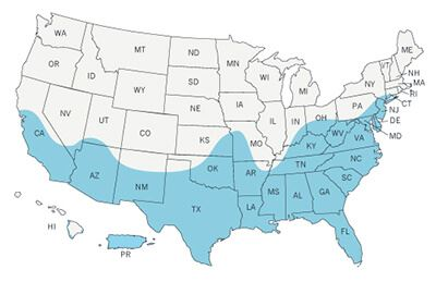 Map showing the spread of Zika virus through the United States