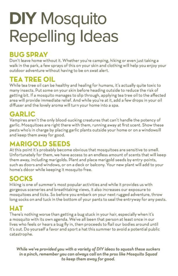 DIY Mosquito Repelling Ideas